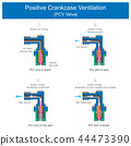 Positive Crankcase Ventilation (PCV Valve). 44473390