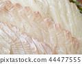 흰살 생선 넙치 도미 회 44477555