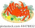 白色螃蟹有白色背景 44478832