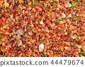 낙엽의 풍경 3 44479674