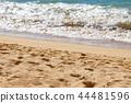 ชายหาด,มหาสมุทร,หาดทราย 44481596