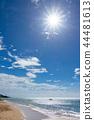 อิชิกาคิกจิมะ,ชายหาด,มหาสมุทร 44481613