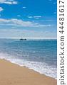 อิชิกาคิกจิมะ,ชายหาด,มหาสมุทร 44481617
