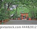 kyoto at japan 2018 44482812