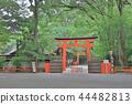 kyoto at japan 2018 44482813