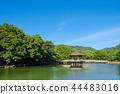 나라 공원, 나라코엔, 연못 44483016