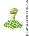 Green snake.Cartoon illustration on white backdrop 44483456