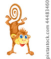 Monkey. Cartoon illustration on white backdrop 44483460