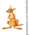 Kangaroo. Cartoon illustration on white backdrop 44483462