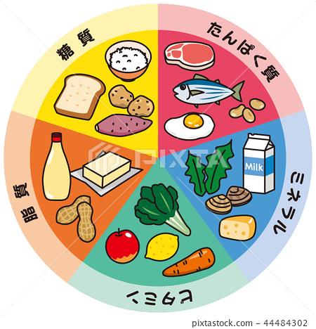 五大營養素 44484302