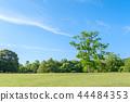 나라 공원의 날 히노 전망 44484353