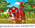 Beautiful nature farm landscape 44484767