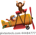 A pilot riding the plane with monkey 44484777