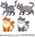 Set of diffrent cat charater 44484886