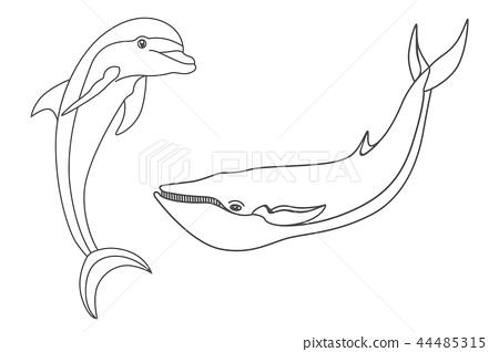 Set marine mammals. 44485315