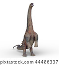 恐龍 爬行動物 爬蟲類的 44486337