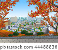 Autumn leaves maple autumn residential area 44488836