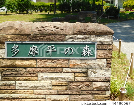 UR Tamadaira森林 44490067