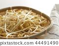 콩나물, 콩, 대두 44491490