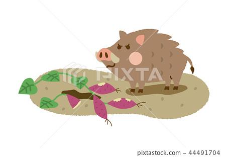野豬領域廢墟 44491704