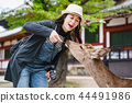 tourist feeding deer with cheerful smile 44491986