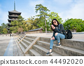 elegant lady sitting on stairs using smartphone 44492020