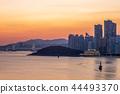 gwangan bridge and skyline of haeundae in busan 44493370