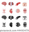 Male system, heart, eyeball, oral cavity. Organs set collection icons in black,cartoon style vector 44493479