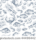 Crawfish and Fishes Sketch Vector Illustration 44496442