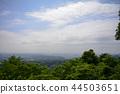 翠绿 鲜绿 城市景观 44503651