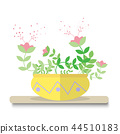 cactus on top table and white background 44510183