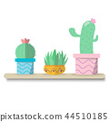 cactus on top table and white background 44510185