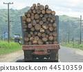 斐濟旅遊車窗風景卡車裝滿木材 44510359
