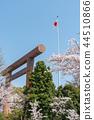 ดอกซากุระบาน,ซากุระบาน,ฤดูใบไม้ผลิ 44510866