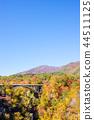 【미야기 현】 鳴子峡의 단풍 44511125