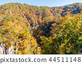 【미야기 현】 鳴子峡의 단풍 44511148