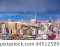 Tokyo, Japan city skyline over Asakusa 44512500
