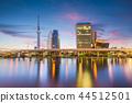 Tokyo, Japan skyline on the Sumida River 44512501