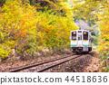 White train commuter Fukushima Japan 44518636