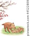 boar, wild boar, parenthood 44522809