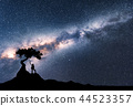 Milky Way and silhouette of woman under the tree 44523357