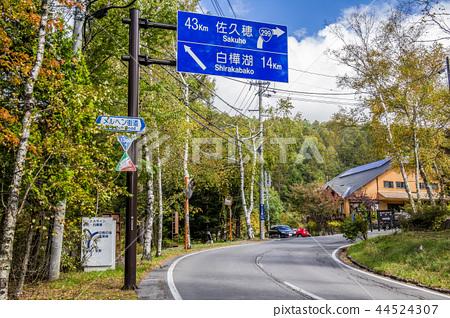 나가노 현 지노시 다테시나 고원 동화 가도 44524307