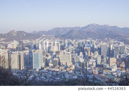 서울 겨울의 아침 44526363