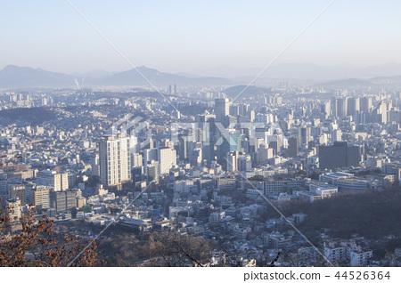 서울 겨울의 아침 44526364