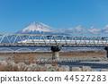 Shizuoka-Fuji and Shinkansen 44527283