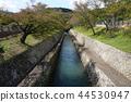 滋贺县 大津 琵琶湖 44530947