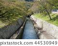 滋贺县 大津 琵琶湖 44530949