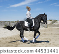 horse, girl, woman 44531441