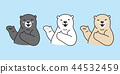 Bear vector polar Bear logo icon cartoon chef cook 44532459