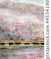 Arashiyama spring cherry blossom Kyoto 44534190
